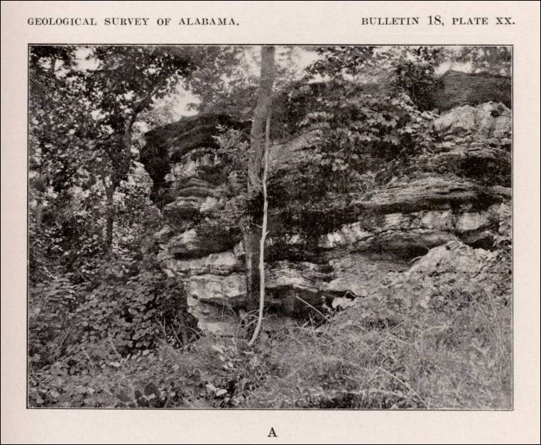 Alabama cliff exposing interbedded fine grained dolomitic marble and phyllite alabama circa sciox Image collections