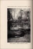 Rock Springs, 6 miles north of Apoka, Florida, circa 1929.