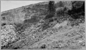 Old Quarry in Sandstone Bluff