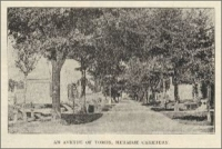 """An Avenue of Tombs, Metairie Cemetery"" (1894)"