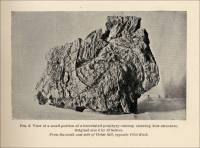 View of a small portion of a brecciated porphyry outcrop showing flow structure. Original size 8 by 12 inches. From the south-east side of Cedar hill, opposite Pilot Knob. (Missouri, circa 1891)
