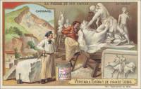 The Stone and Its Use - Marble, French trade card (front)