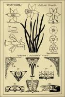 "Daffodil Patterns in ""Monumental Drawing and Lettering: The Daffodil in Applied Ornament"" (1926)"
