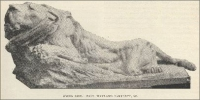 """Dying Lion - Paul Wayland Bartlett. SC."" (""The Monumental News,"" 1895)"