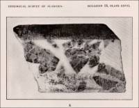 In the crystalline marble deposits the marble beds are in many places interstratified with dolomite or contain lenses of dolomite, similar to the chief marble deposits of Vermont. (Alabama, circa 1916)